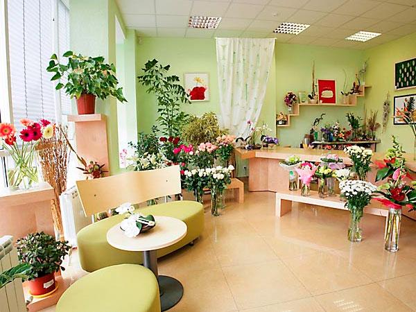 Как украсить комнаты комнатными цветами